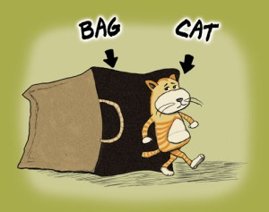 cartoon cats out of bags 4