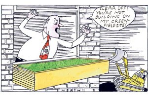 cartoon green belt 1